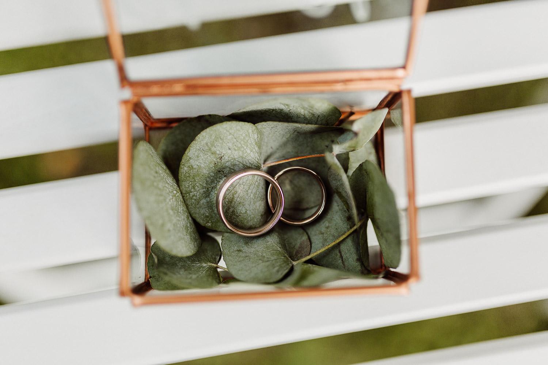 Hochzeitsringe auf Eukalyptusblättern