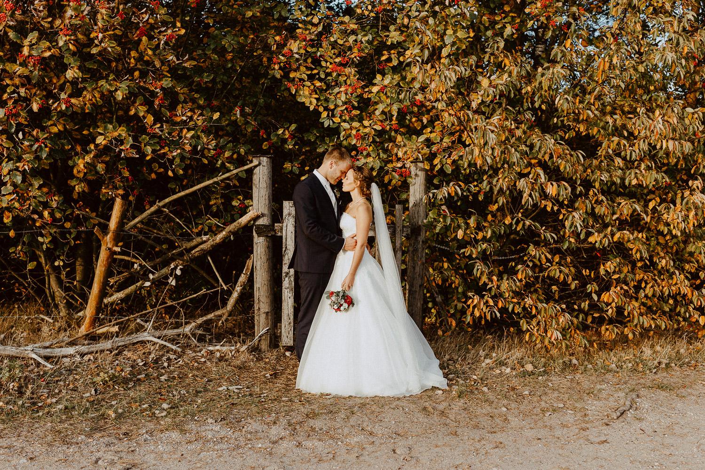 Brautpaar steht vor Herbstlaub